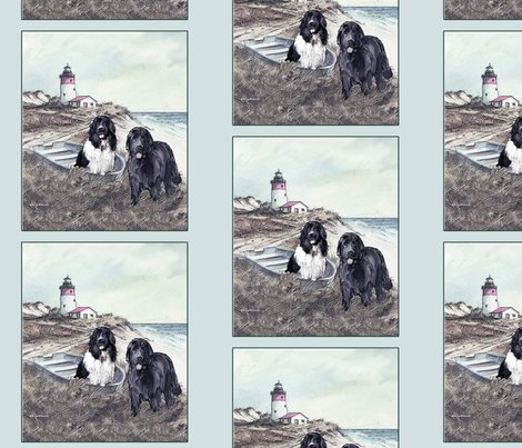 Rrrrrrrtwo_newfs_and_boat_for_quilt_shop_preview