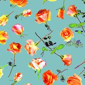 roses ciel col. 3
