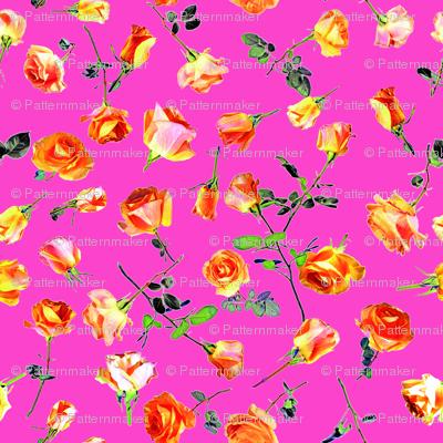 roses pink col. 10