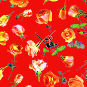 roses coral col. 11