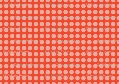 Persimmon Dots