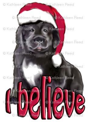 I_Believe_Christmas_Newf