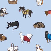 Rrpetsfabric_shop_thumb