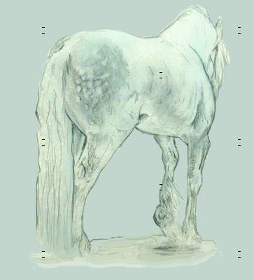 Gypsy Horse on blue-gray