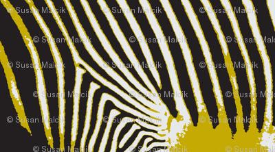 Optical Zebra