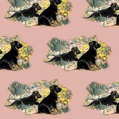 Rrrgsd_puppies_in_flowers__shop_thumb