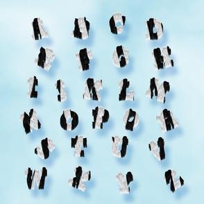 Zebra Fur Alphabet