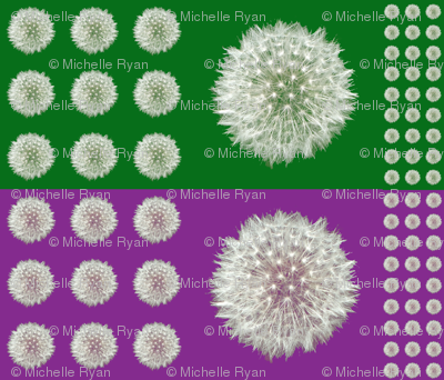 Dandelion Seedhead Multi-sized
