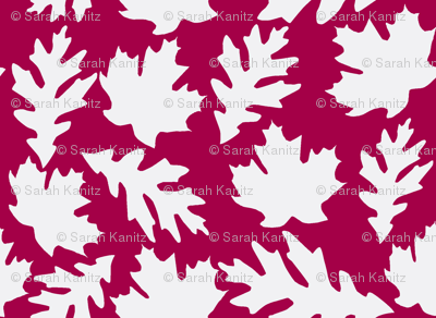 Cranberry and white leaves