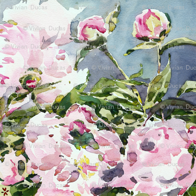 C'EST LA VIV Garden Lark Collection_PEONY 8
