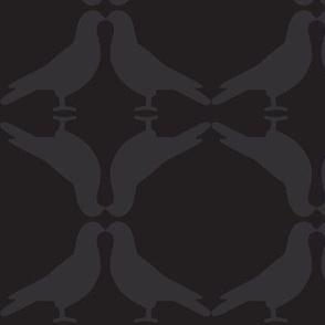 Pigeon Circles-B&G