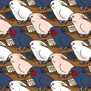 Cockatoo or Three