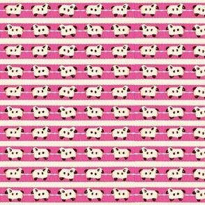Sheep-on-Ribbons Pink