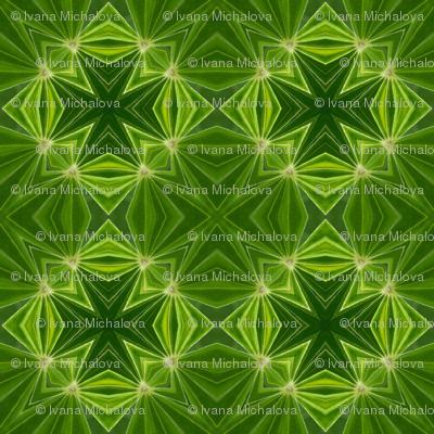 110618-green