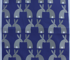 Gray bunnies with dark blue background