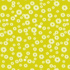 Tiny Daisies on Green