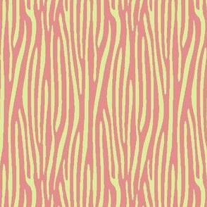 preppy zebra