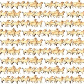 repeating_pattern_golden_retriever