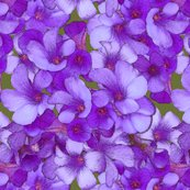 Rrmini_blue_flowers_copy_shop_thumb