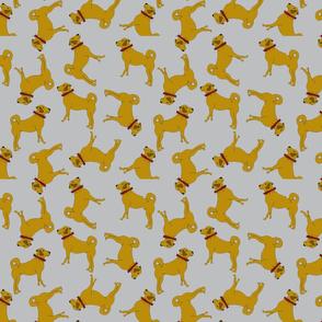 kangaltopsy