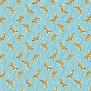 Aussie Platypus