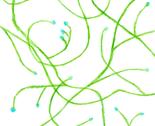 Rrwnc_vines_1_thumb