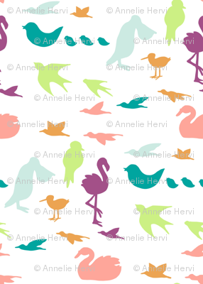 colorfulbirds