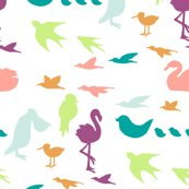 Rcolorfulbirds_shop_thumb