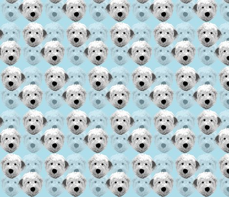 Rrrrenglish_sheepdog_1_shop_preview