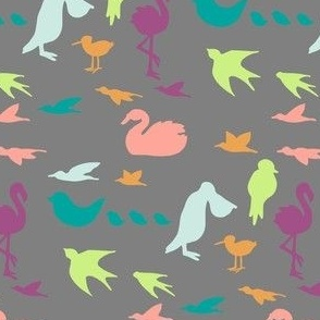 colorful birds on gray