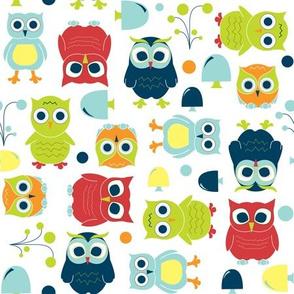 Owls - Rainbow