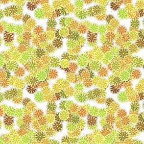 citus-yellow