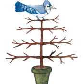 Blue Jay Espalier - Topiary Collection