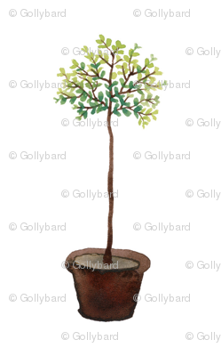 Myrtle Standard - Topiary Collection