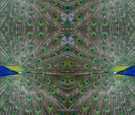 peacock_silk crepe de chine  fabric by miss_blümchen on Spoonflower - custom fabric