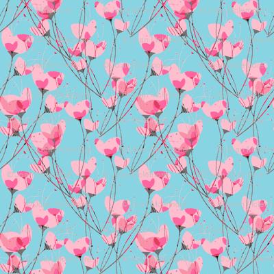 Pink Primrose Blue Background