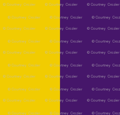 Purple-gold_Stripes