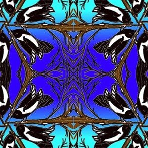 Magpie meeting