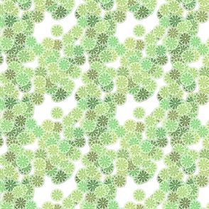 citrus_lime_large