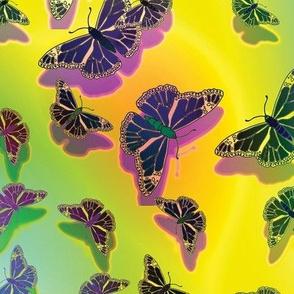 Butterfly Motif 16