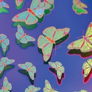 Butterfly Motif 24