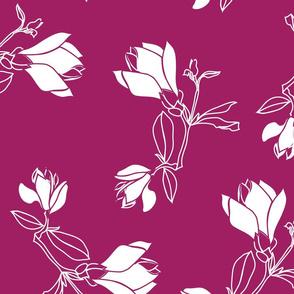 magnolia04