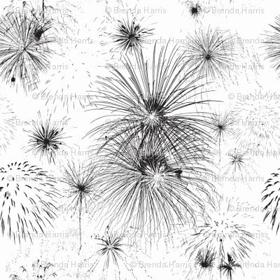 Firework Delight