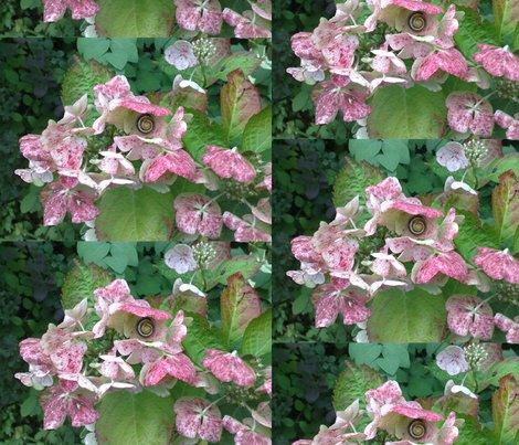 Rrrrrflower3_3300pix_shop_preview