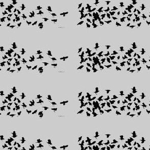 Flying South - Grey