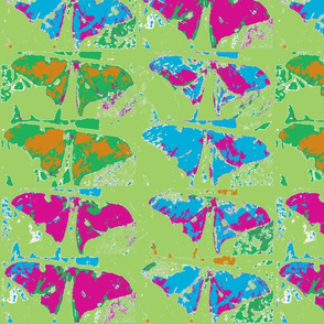 butterfly-ed-ed-ch