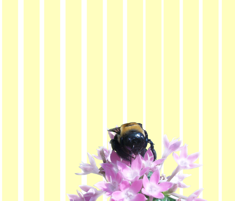 Bee on White & Yellow fabric by pond_ripple on Spoonflower - custom fabric