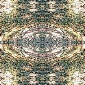 Gnarled Tree Bark 1 S