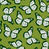 butterflies in greens