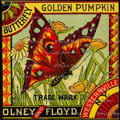 Golden Pumpkin Butterfly